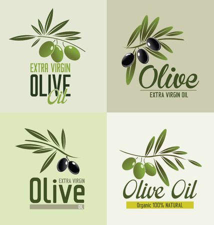 plant antioxidants: Olive Branches