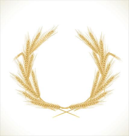 winter wheat: Wreath of wheat Illustration