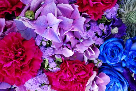 pinks: violet and blue roses and pinks in a bunch