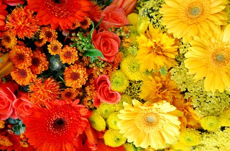 blumen: orange and yellow roses and gerbera flowers