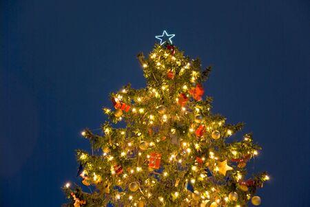 christmas tree in berlin at night photo
