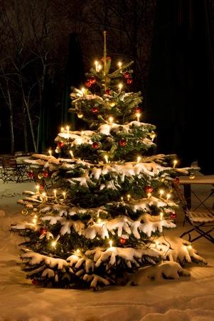 冬は雪と飾りのクリスマス ツリー 写真素材