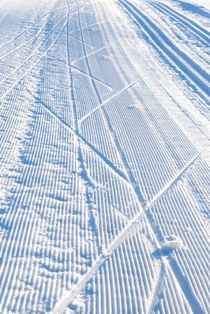 ski run: cross country ski run in blue evening light