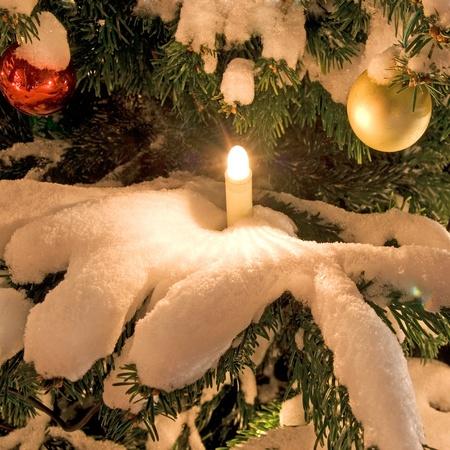 Weihnachtsbaum mit Schnee und Dekoration im Winter