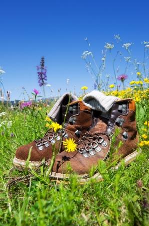 マウンテン ブーツ上の青い空と高山の牧草地 写真素材
