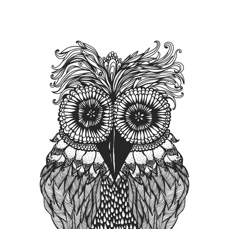 Vector illustration of an owl