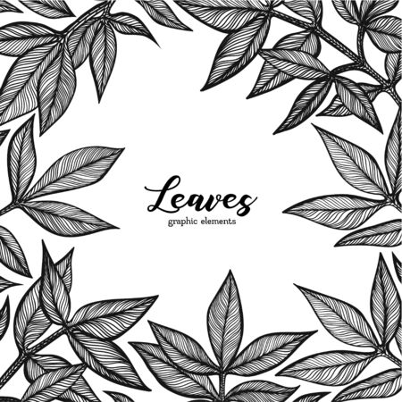 Graphic detailed background with peony leaves. Linear vector leaves for your design greeting cards, packing and background