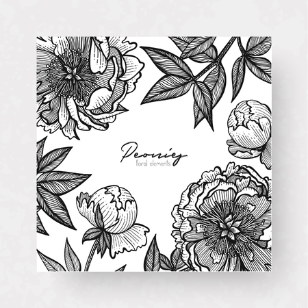 Graphic detailed cards with peony and leaves. Linear vector leaves for your design greeting cards, postcards, flyer, packing, invitations and background