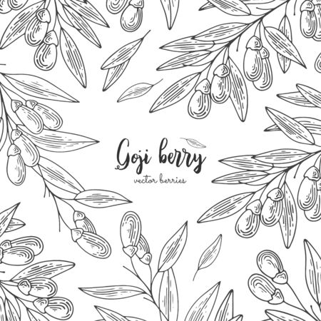 Detailed frame with goji berry. Isolated hand drawn illustration on white background. Design elements for menu, promotion, advertising, cards, wrapping paper, cosmetics packaging.