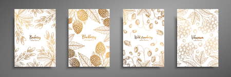 Gold collection of cards design with berries. Vintage gold frame with ripe berries illustrations - blackberry, wild strawberry, viburnum, barberry. Great design for natural and organic products.