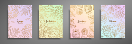 Gold colorful collection of cards design with berries. Vintage gold frame with berries illustrations - rowan, sea buckthorn, strawberry, viburnum. Great design for natural and organic products.