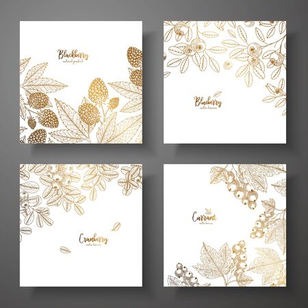 Collection of square gold cards with berries isolated on plain background.
