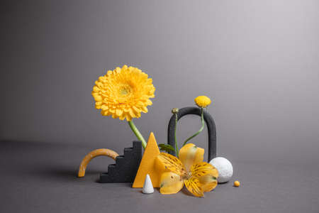 Minimalistic composition with geometric objects and flowers. Balancing flowers with varied shapes. Modern abstract botanical background. Trendy colors - gray and yellow