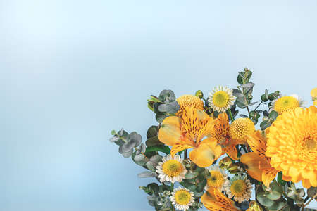 Blue background with yellow blooming flowers. Botanical backdrop with plants frame and space for your text.