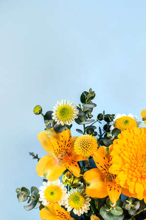 Blue background with yellow blooming flowers. Botanical backdrop with plants frame and space for your text. Can be used for banner, poster. Bright composition with spring flora