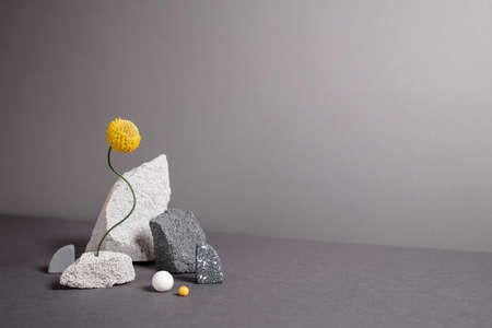 Diverse geometric figures with natural textures. Abstract minimalistic still life with copy space. Balancing flower with varied shapes, natural textures. Trendy colors of 2021 year - gray and yellow.