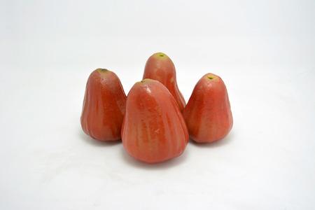 fruitage: Ginseng fruit