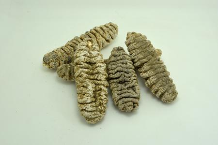 sea cucumber: Dry sea cucumber
