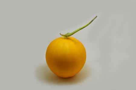golden honeydew melon ロイヤリティーフリーフォト ピクチャー 画像