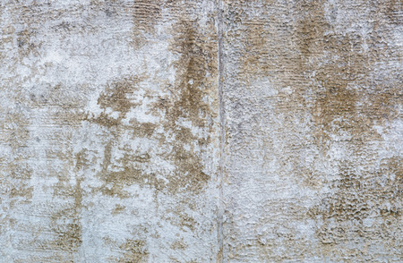 plastered wall: Texture gray plastered wall for background Stock Photo