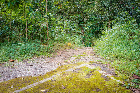 end of the trail: End of road and begin of appalachian hiking trail at national park, Thailand
