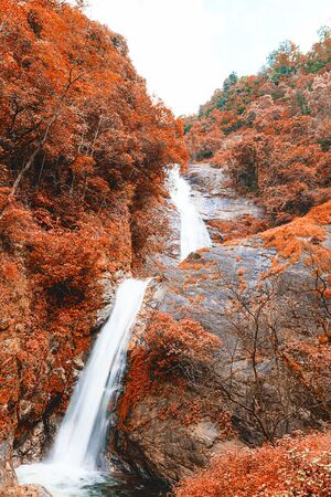 wonderful thailand: Wonderful autumn waterfall in deep forest at national park, Thailand