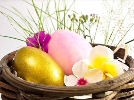 Easter egg in the basket with flowers Stock Photo - 18658152