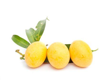 tast: The Marian plum fruit isolated on white background