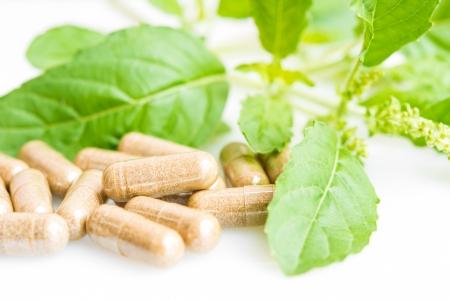 herbal medicine: Herb capsule with green herbal leaf