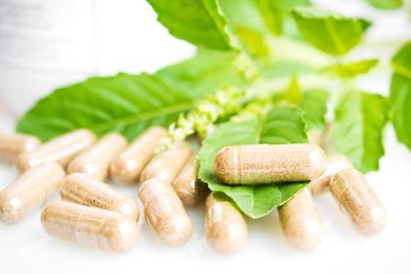 Herb capsule with green herbal leaf photo