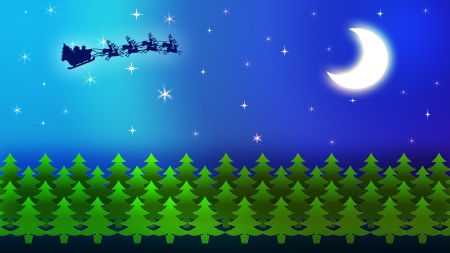 Moon and star with forest on Christmas night photo