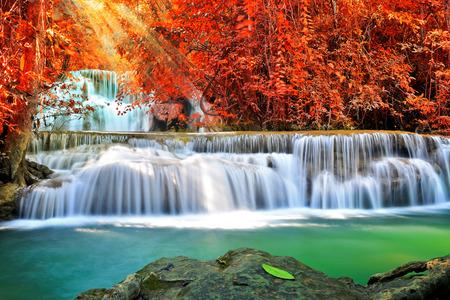 깊은 숲에서 아름 다운 폭포 스톡 콘텐츠 - 28825150