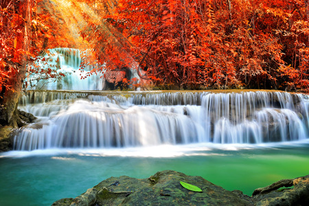 beautiful woodland: Beautiful waterfall in deep forest
