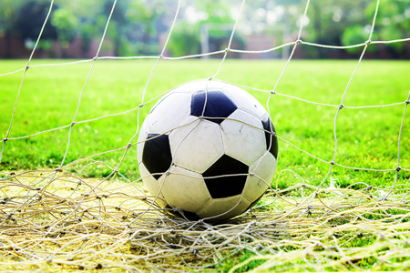 camping pitch: Football in a goal net