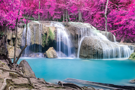 깊은 숲에서 아름 다운 폭포 스톡 콘텐츠