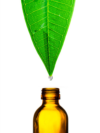 Herbal alternative medicine water drop falling down from a leaf to the bottle Imagens