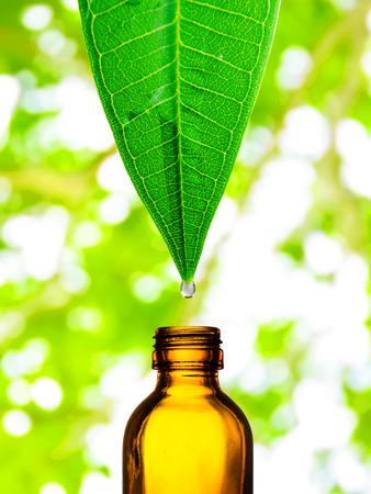 waterdruppel vallen van een blad aan de fles