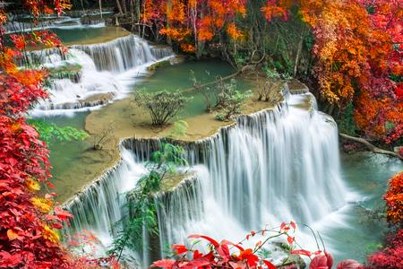 다채로운가 숲에서 아름 다운 폭포