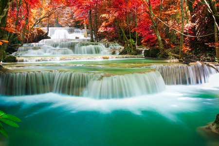 Beautiful waterfall in autumn tree forest