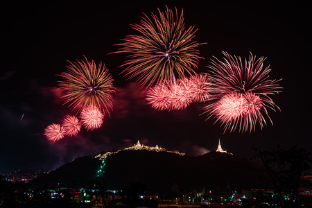 beautiful colorful firework display on dark sky for celebration night Stockfoto