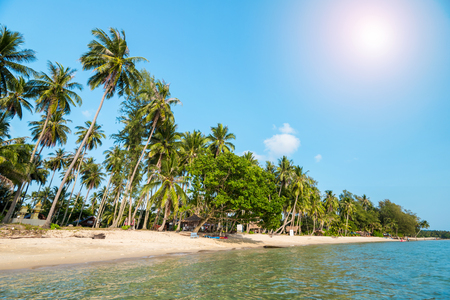 sand beach with coconut trees for summer vacation to tropical island concept for background. 스톡 콘텐츠