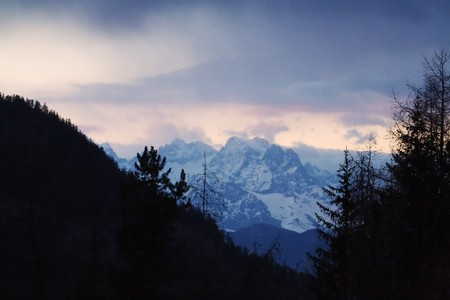Sunset in the french alps, with tree silouhettes Banque d'images