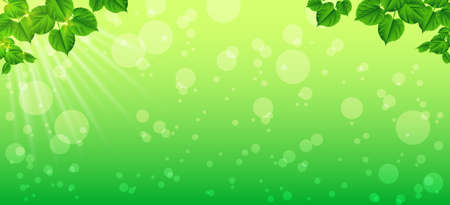 Vector, illustration. Clipping Mask. Forest background with sun light coming through the green leaves. Green backdrop with fresh spring foliage, sparkles and sunbeams. Young leaves in the rays of spring dawn. Close-up. Nature background.Panorama.