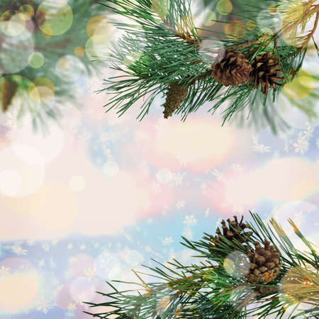 Pine branches with cones close-up. Winter background. Christmas background with bokeh. Zdjęcie Seryjne