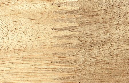jointed: Jointed wood Stock Photo