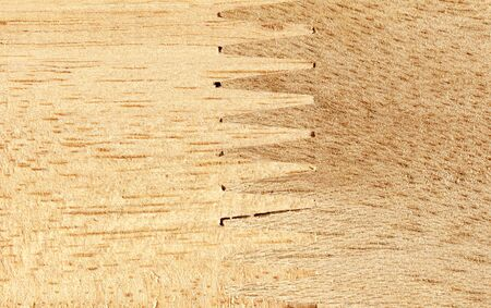 jointed: Jointed wood texture Stock Photo