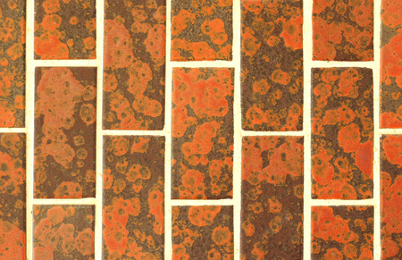 ���wall tiles���: Old-fashioned wall tiles Stock Photo