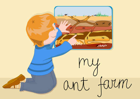 the child with interest watching the ants in a transparent ant farm Иллюстрация