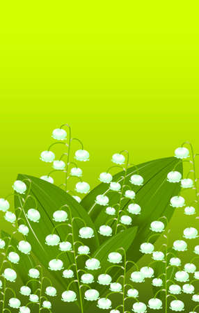 Spring Vector illustration - a lot of flowers and leaves of lilies of the valley on the sunny green background with space for text