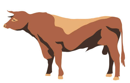 large standing strong bull with horns Illustration